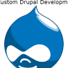 Get The Best Custom Drupal Development Service For Your e-Commerce Website