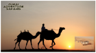 Desert Safari Dubai | Dubai Adventure Safari | Best Tour Deals