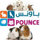 Pounce animals trading Dubai
